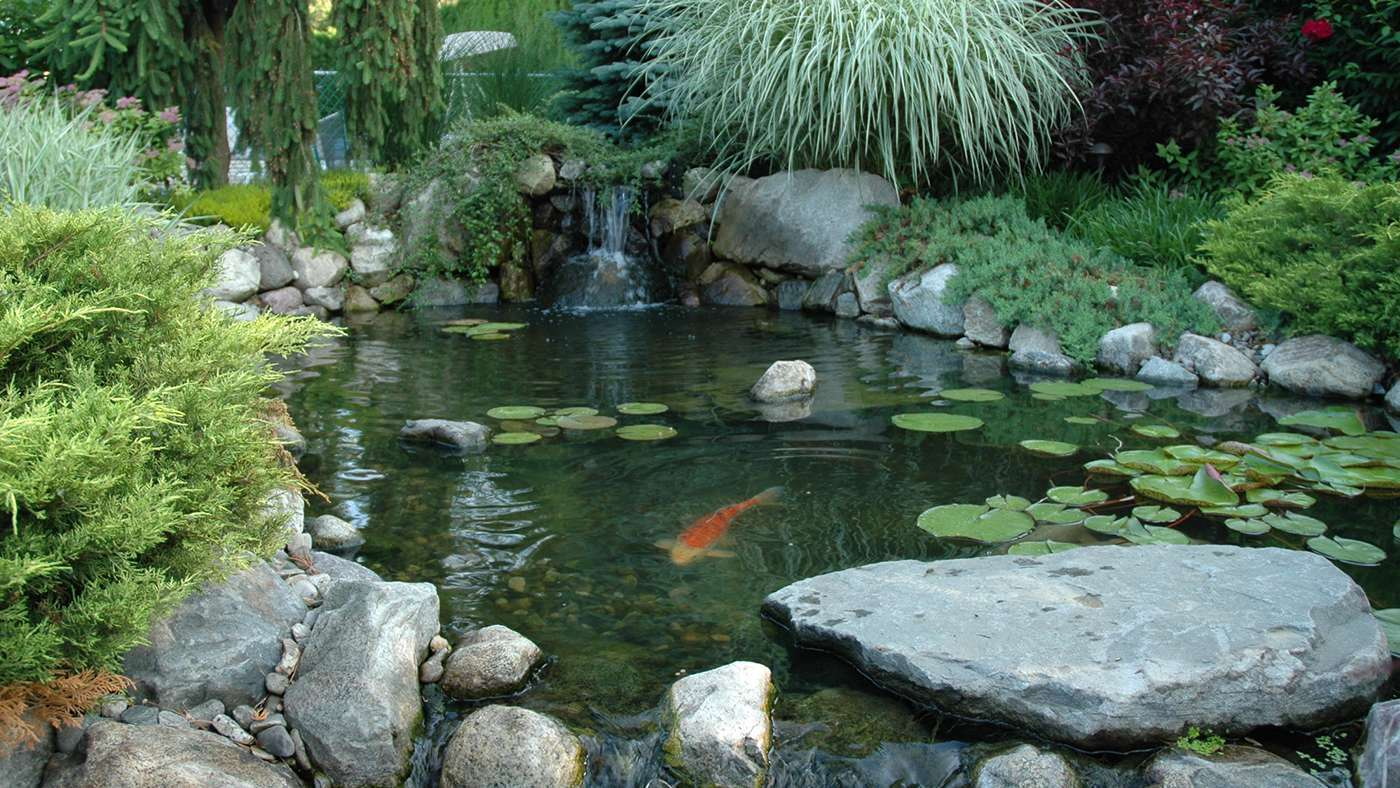 Project galleries aztlan outdoor living for Stone koi pond